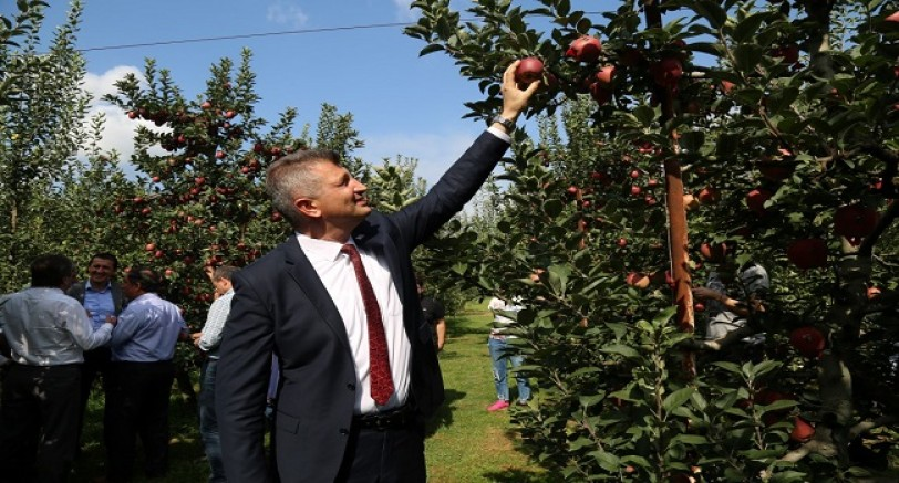 27. Yeşil Elma Festivali Başladı
