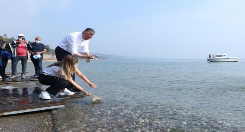 Balıklar Bu Kez Darıca Sahilinden Salındı