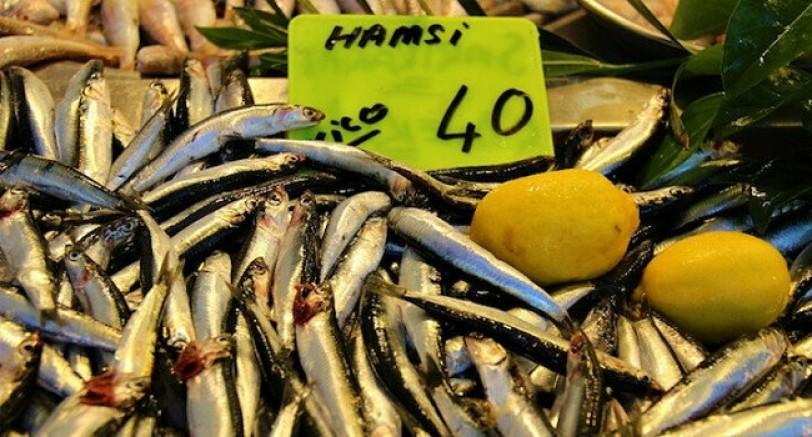 Hamsi'de Çılgınl Fiyatlar