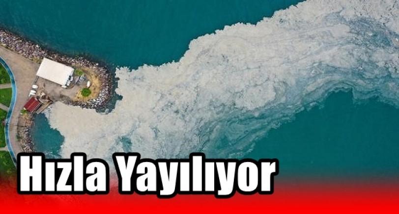 Marmara Denizinde Etkili Olan Müsilaj Hızla Yayılıyor