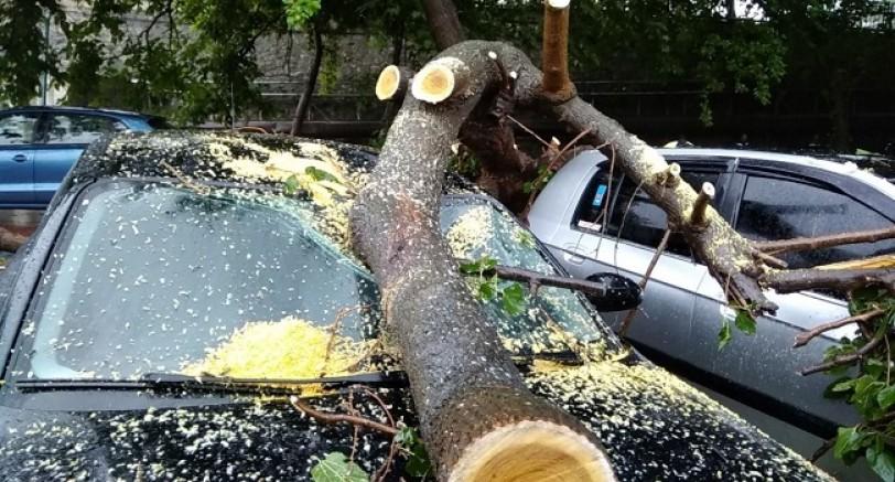 Şimşek Ağaç'a İsabet Etti 4 Araç Hasar Gördü