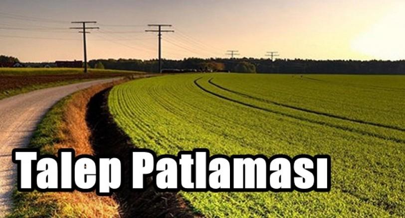 Tarım Arazilerine Talep Patlaması